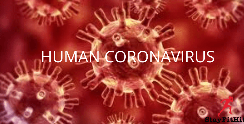Coronavirus : Everything You Need To Know About It!
