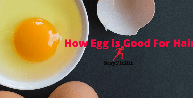 How Egg is Good For Hair Improvements And Why!